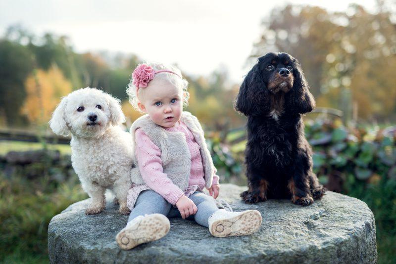 Eija and dogs